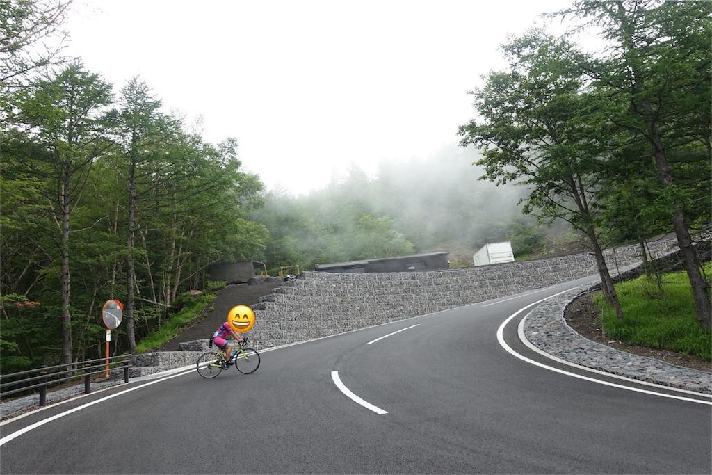 f:id:road_mushi:20170804214330j:image