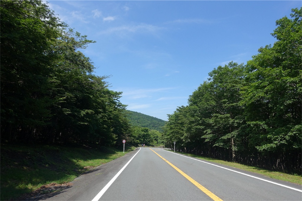 f:id:road_mushi:20170804234925j:image