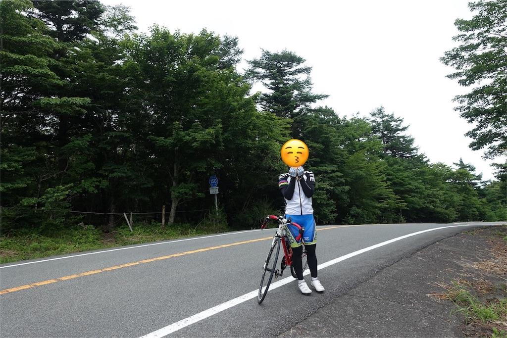 f:id:road_mushi:20170805194139j:image