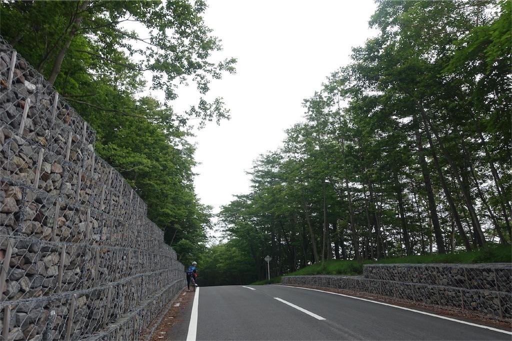 f:id:road_mushi:20170805205406j:image