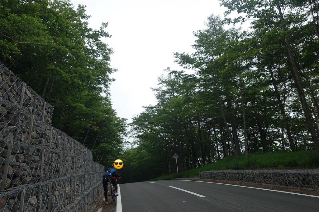 f:id:road_mushi:20170806065253j:image