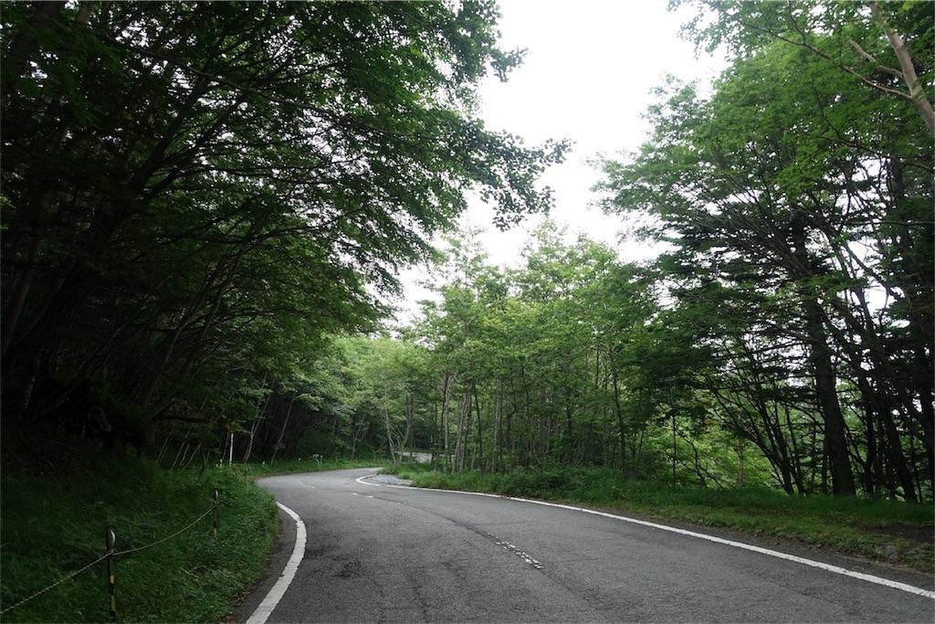 f:id:road_mushi:20170806065457j:image