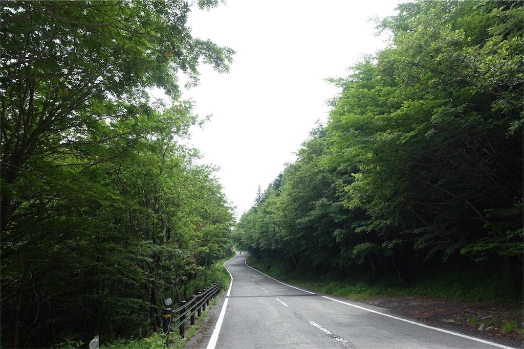 f:id:road_mushi:20170806065501j:image