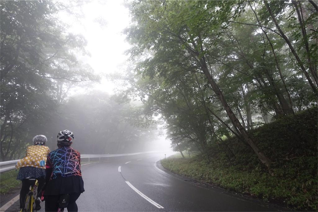 f:id:road_mushi:20170817205334j:image