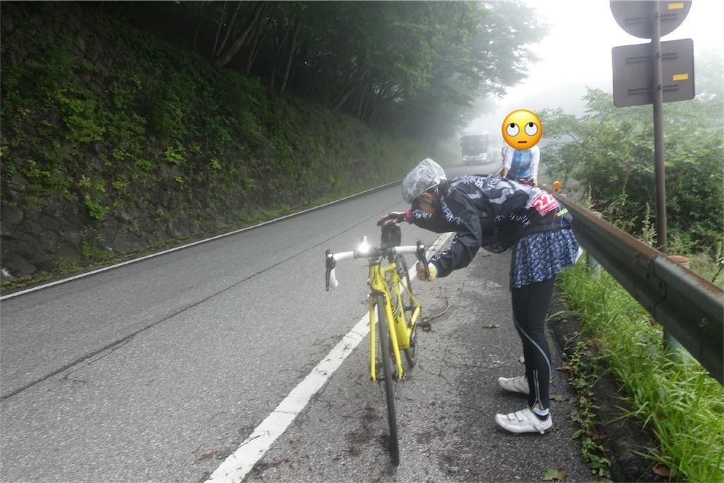 f:id:road_mushi:20170819051828j:image