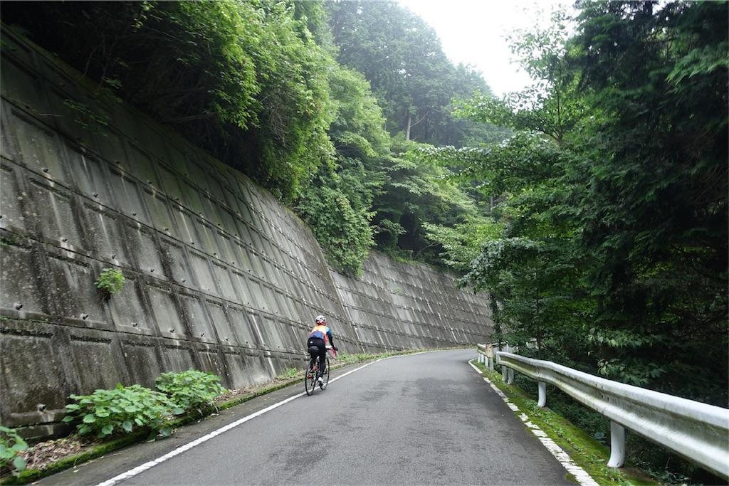 f:id:road_mushi:20170823180940j:image