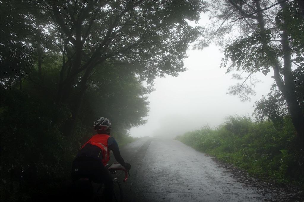 f:id:road_mushi:20170825215249j:image