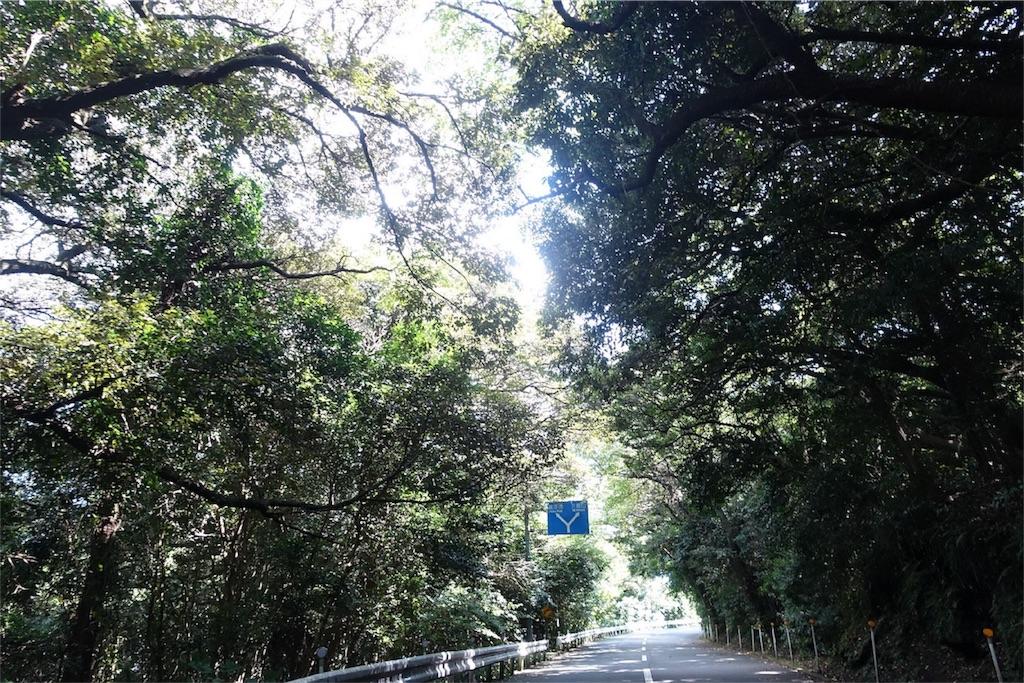 f:id:road_mushi:20170830082421j:image