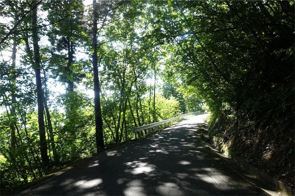 f:id:road_mushi:20170907221523j:image