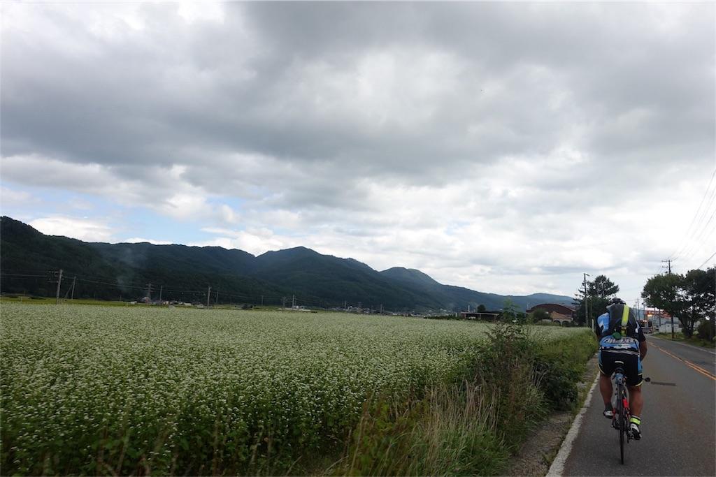 f:id:road_mushi:20170911094102j:image