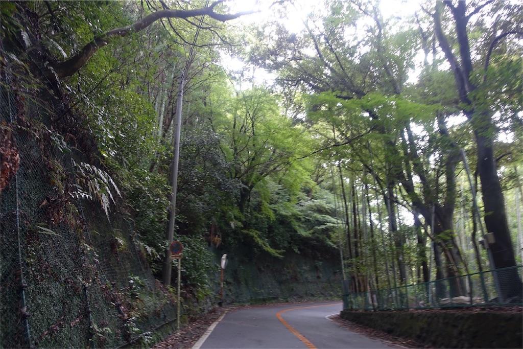 f:id:road_mushi:20170928111316j:image