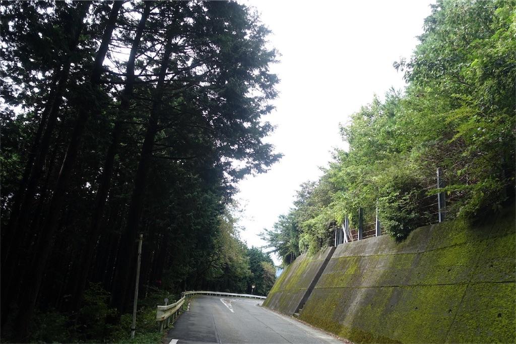 f:id:road_mushi:20170928122851j:image