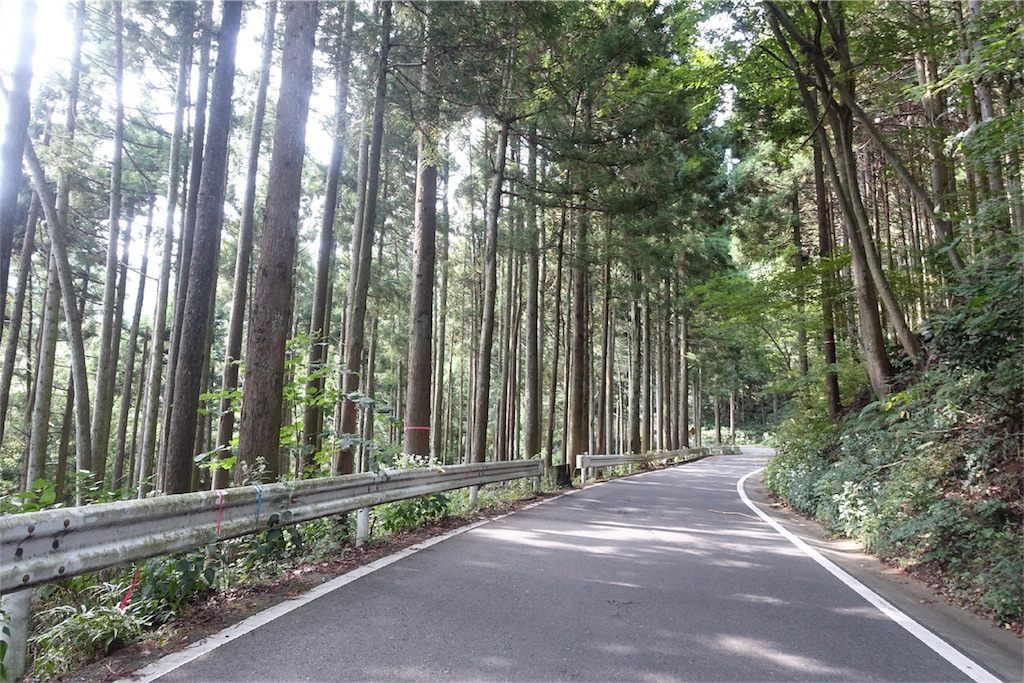 f:id:road_mushi:20171003193105j:image