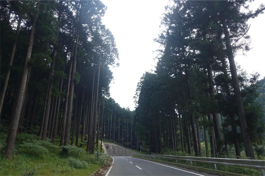 f:id:road_mushi:20171003221236j:image