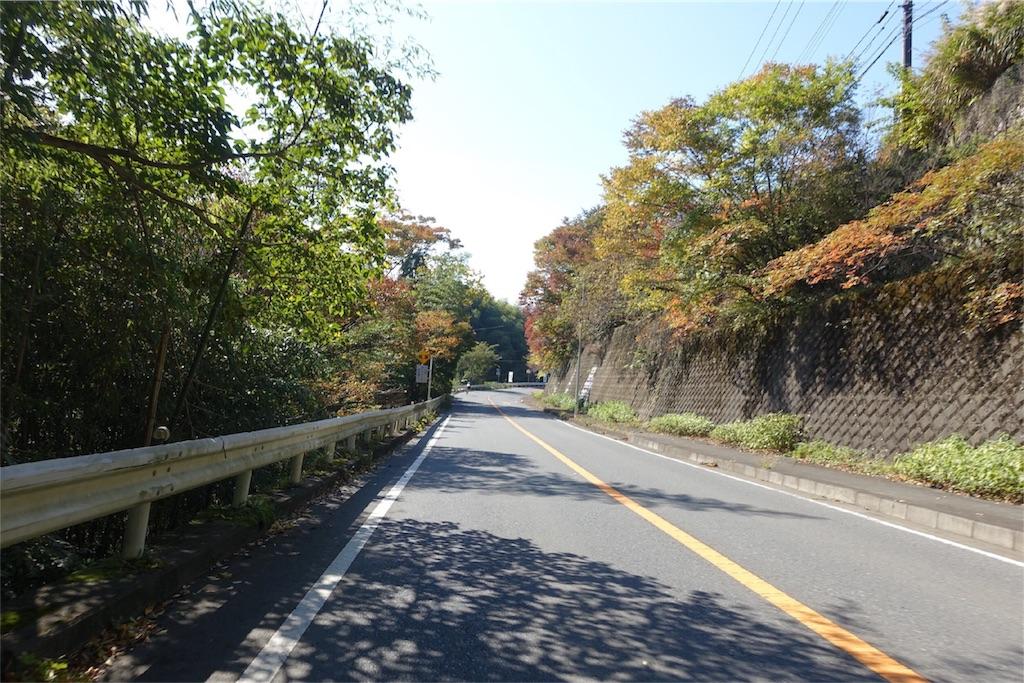 f:id:road_mushi:20171111223108j:image