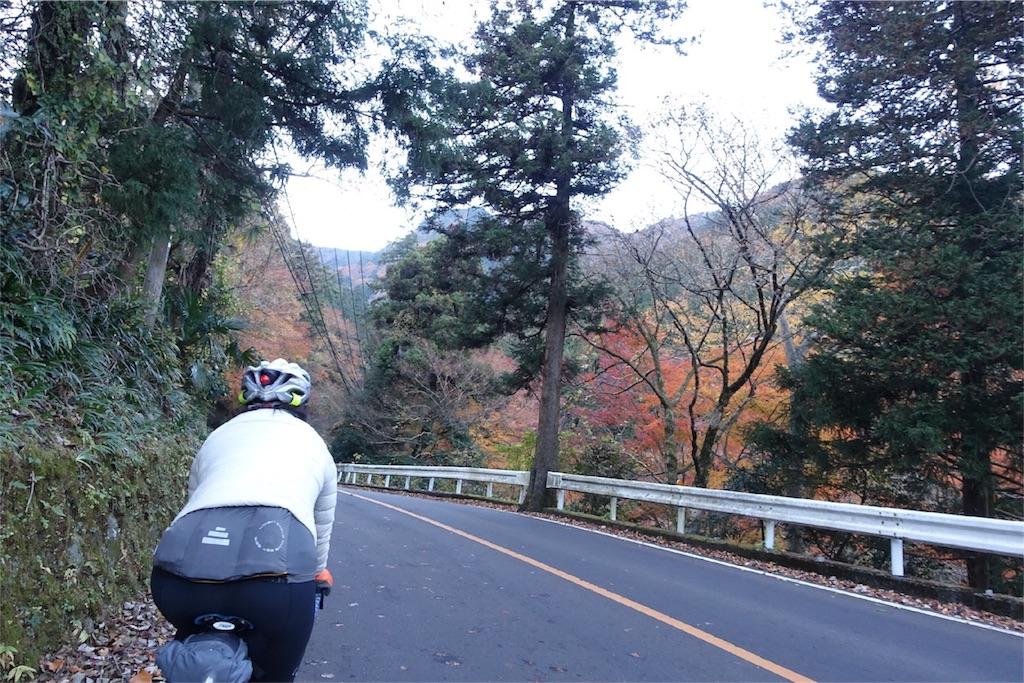 f:id:road_mushi:20171210212422j:image