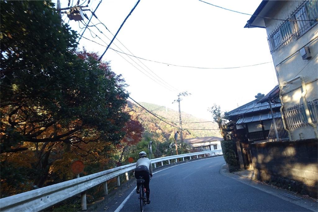 f:id:road_mushi:20171210215427j:image