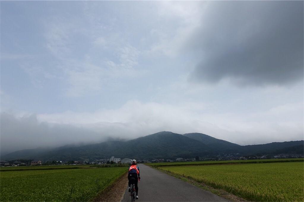 f:id:road_mushi:20171231220540j:image