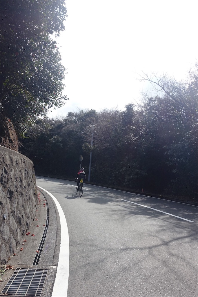 f:id:road_mushi:20180316170707j:image