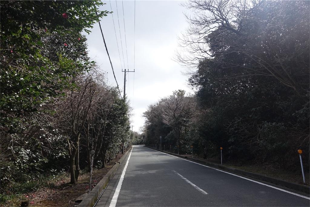 f:id:road_mushi:20180316171202j:image