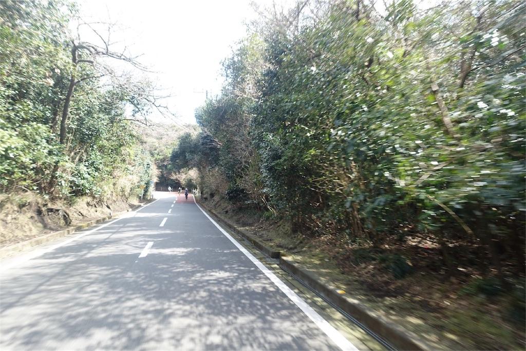 f:id:road_mushi:20180316175103j:image