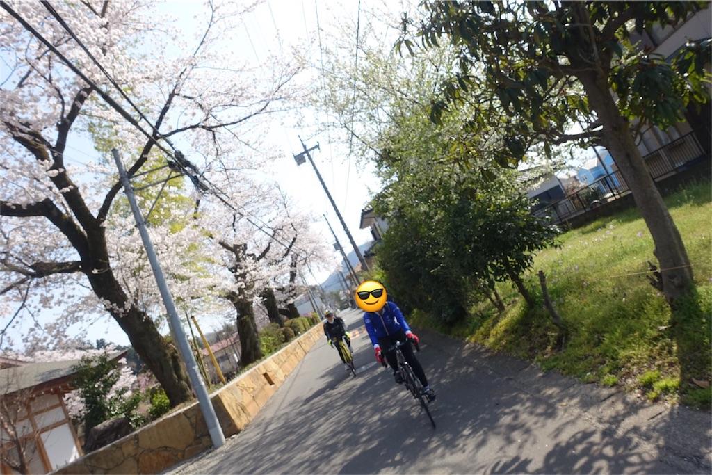 f:id:road_mushi:20180407100607j:image