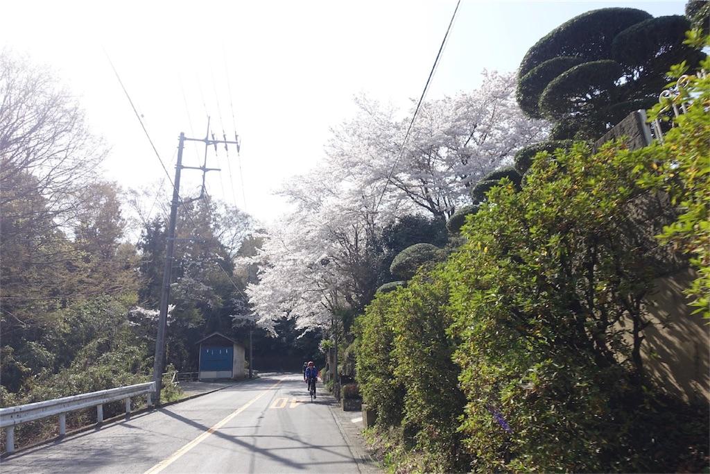 f:id:road_mushi:20180407104527j:image