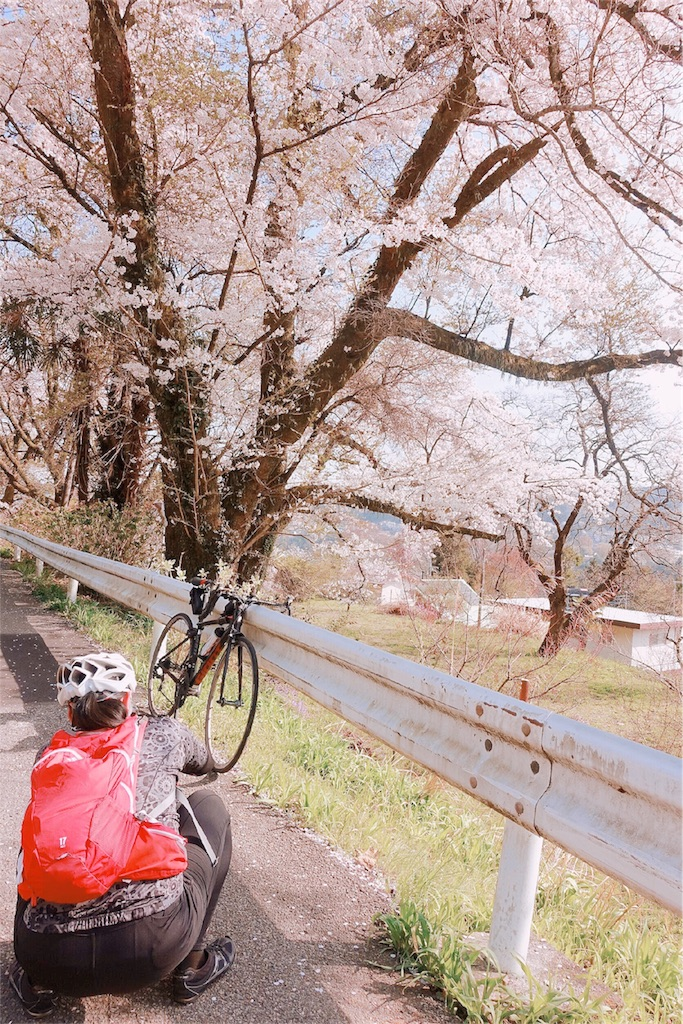 f:id:road_mushi:20180407114350j:image