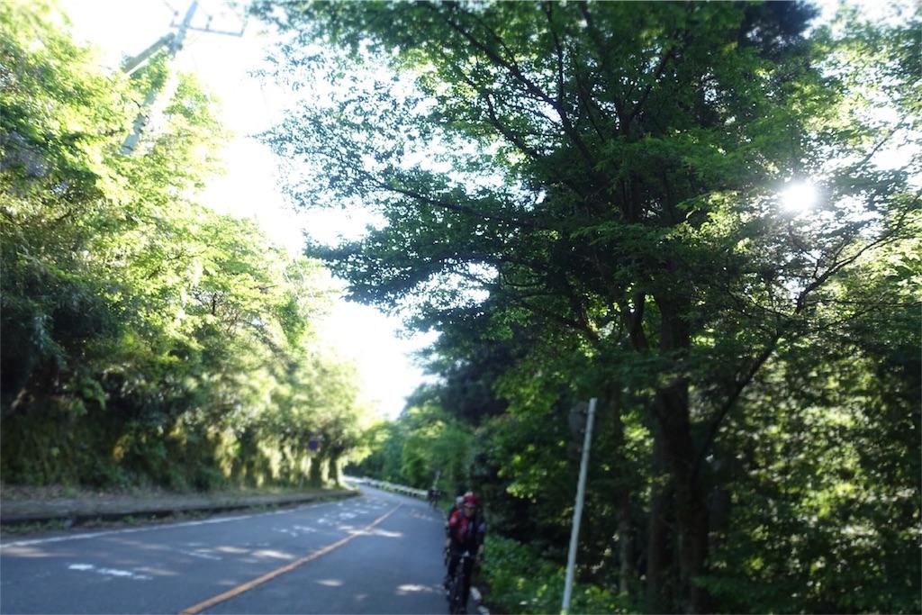 f:id:road_mushi:20180530183047j:image