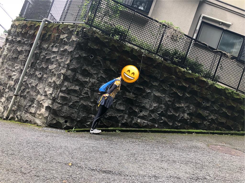 f:id:road_mushi:20180629180319j:image