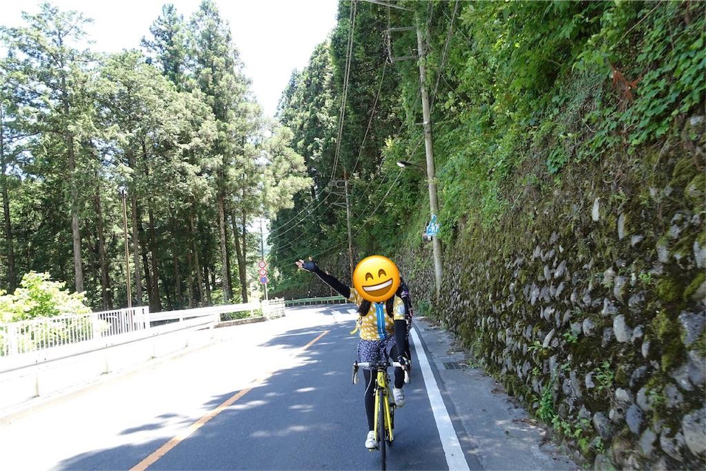 f:id:road_mushi:20180707075432j:image
