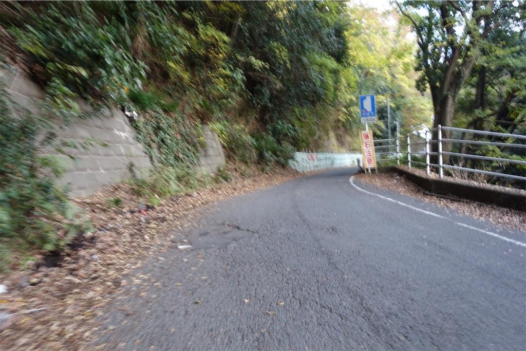 f:id:road_mushi:20181120180222j:image
