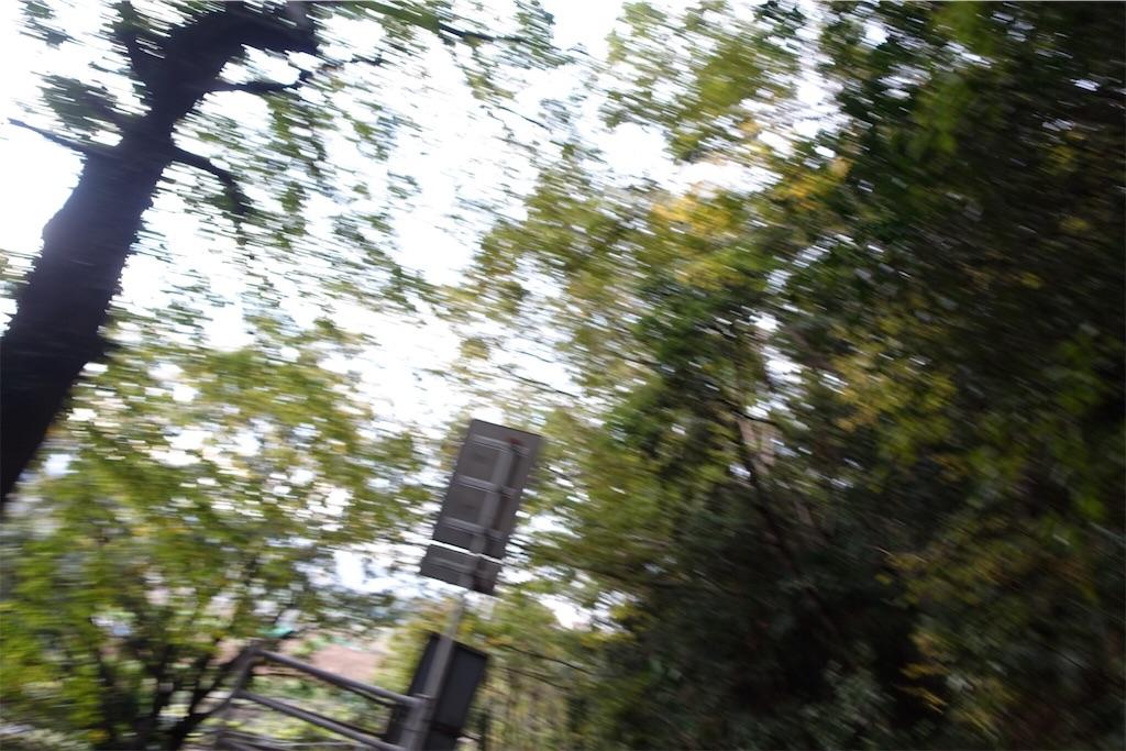 f:id:road_mushi:20181120180225j:image