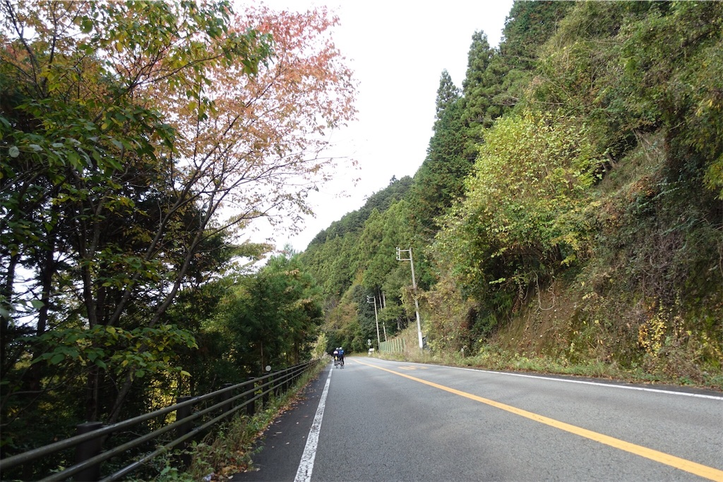 f:id:road_mushi:20181126191201j:image