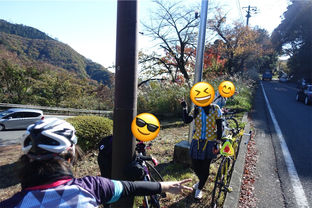 f:id:road_mushi:20181130230402j:image