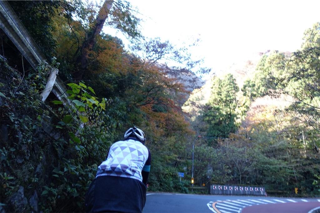 f:id:road_mushi:20181130230522j:image