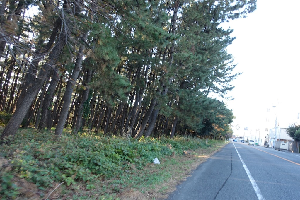 f:id:road_mushi:20181130232814j:image