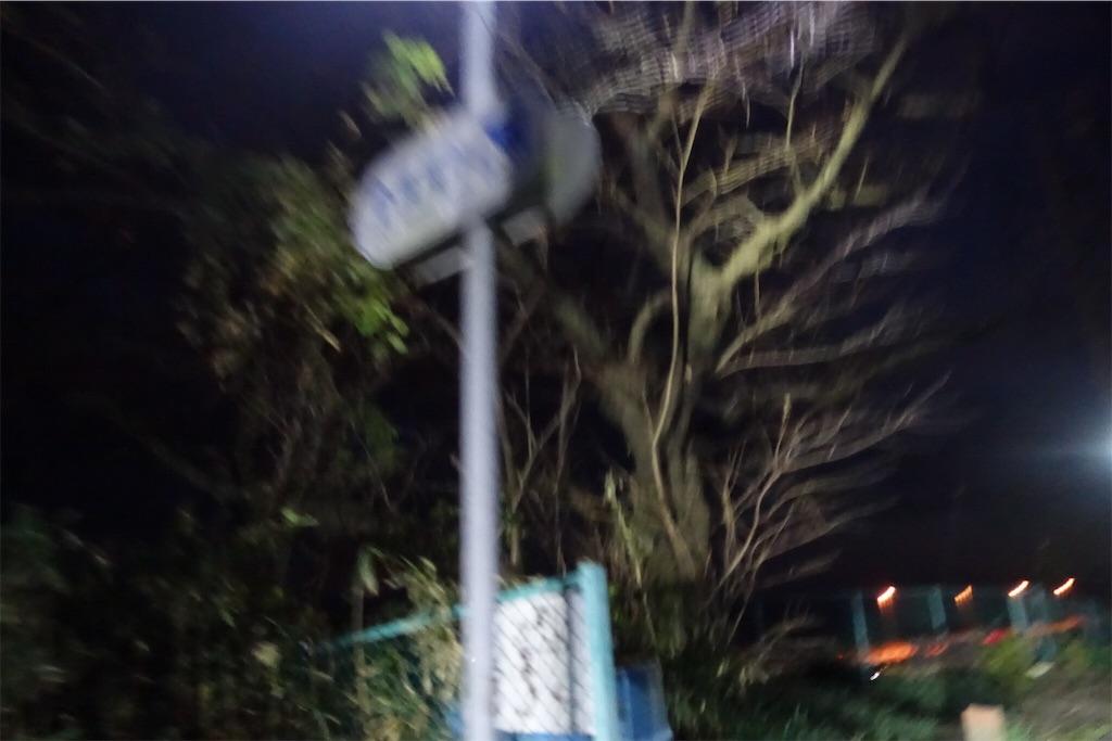 f:id:road_mushi:20181201134744j:image