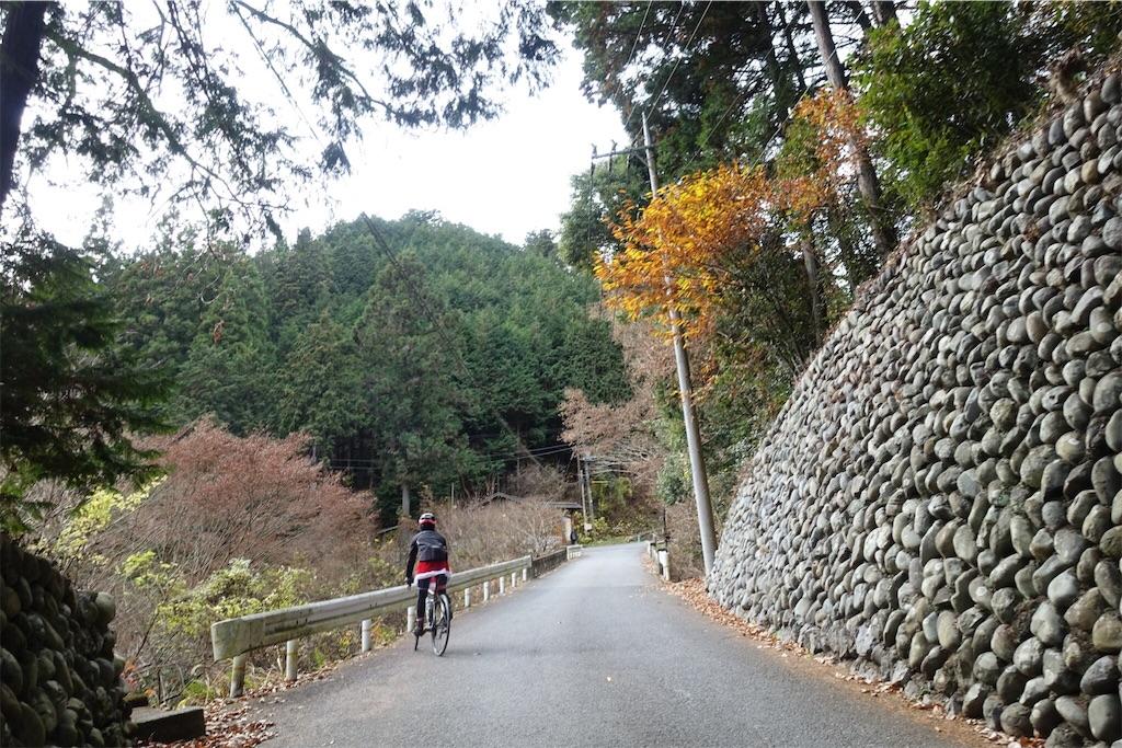 f:id:road_mushi:20181211223451j:image