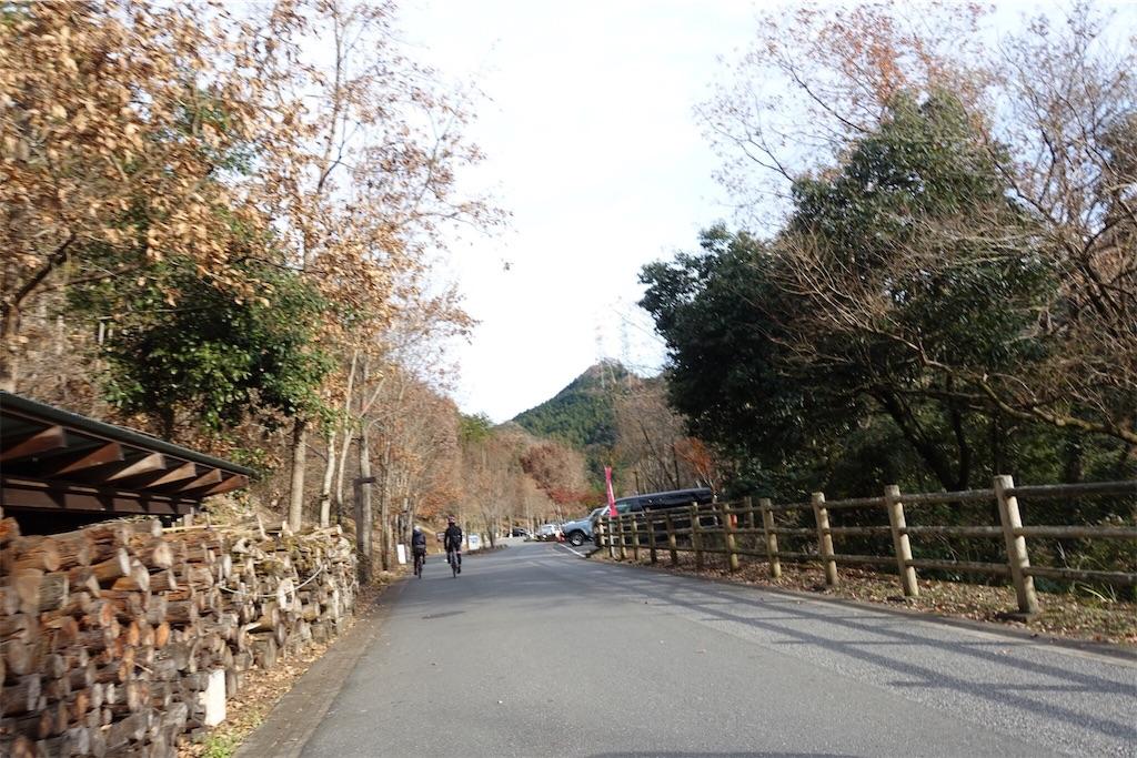 f:id:road_mushi:20181211225407j:image