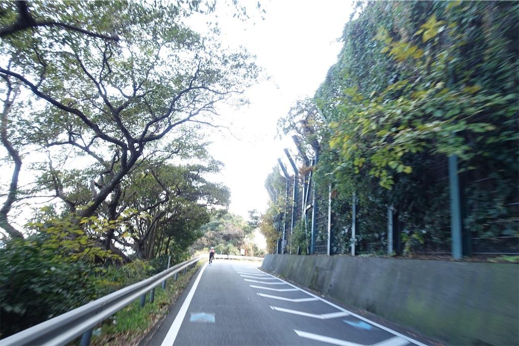 f:id:road_mushi:20190114100842j:image