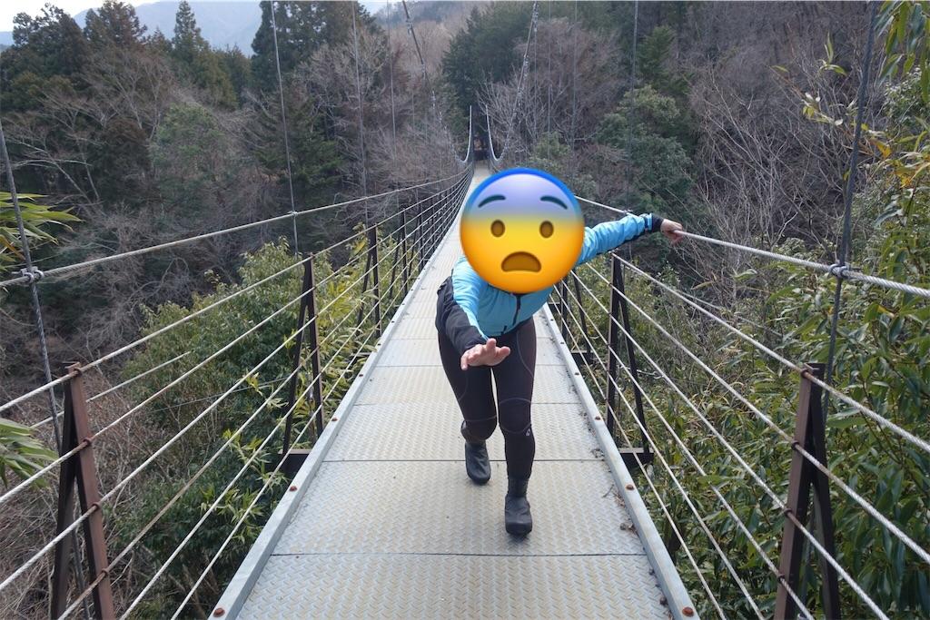 f:id:road_mushi:20190221181136j:image