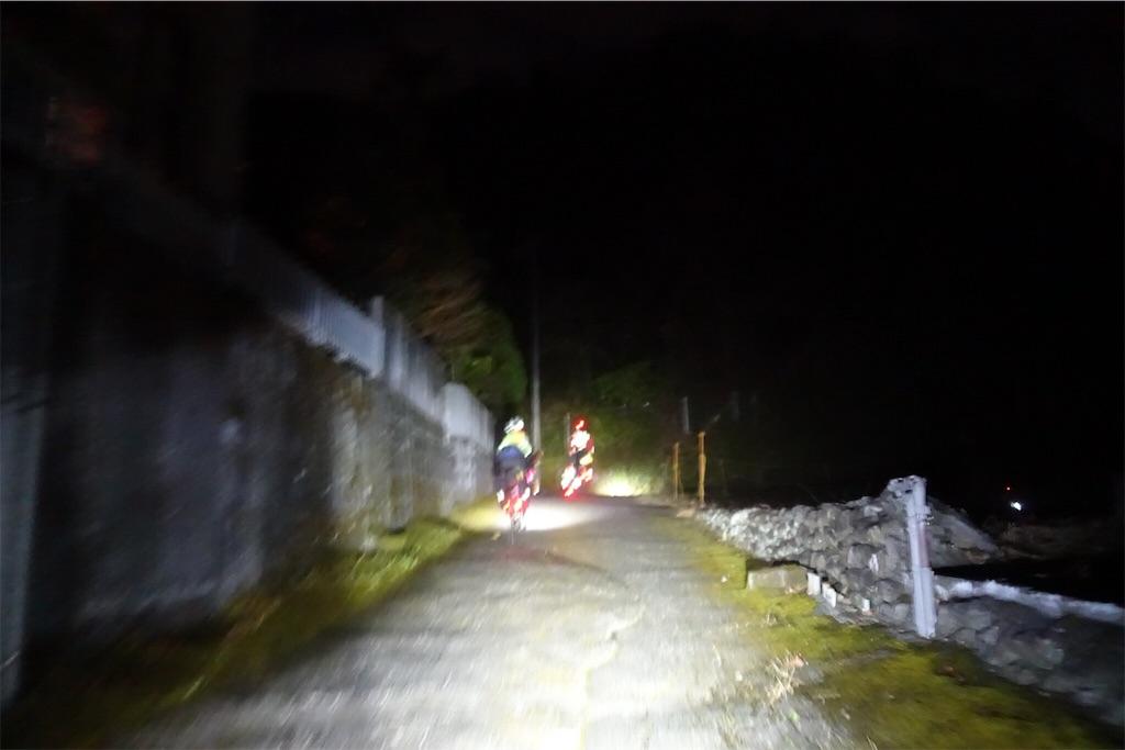 f:id:road_mushi:20190228191617j:image