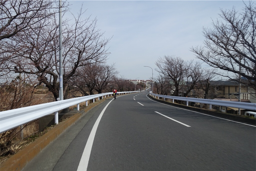f:id:road_mushi:20190304173844j:image
