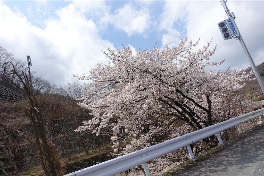 f:id:road_mushi:20190402181530j:image