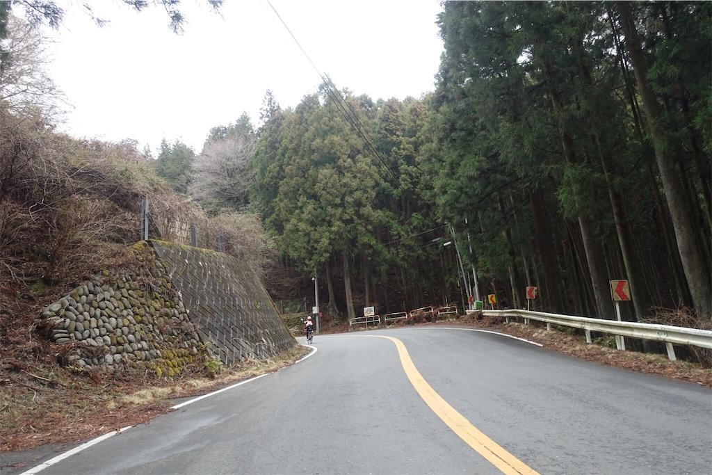 f:id:road_mushi:20190402181548j:image