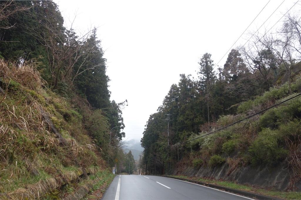 f:id:road_mushi:20190402181609j:image