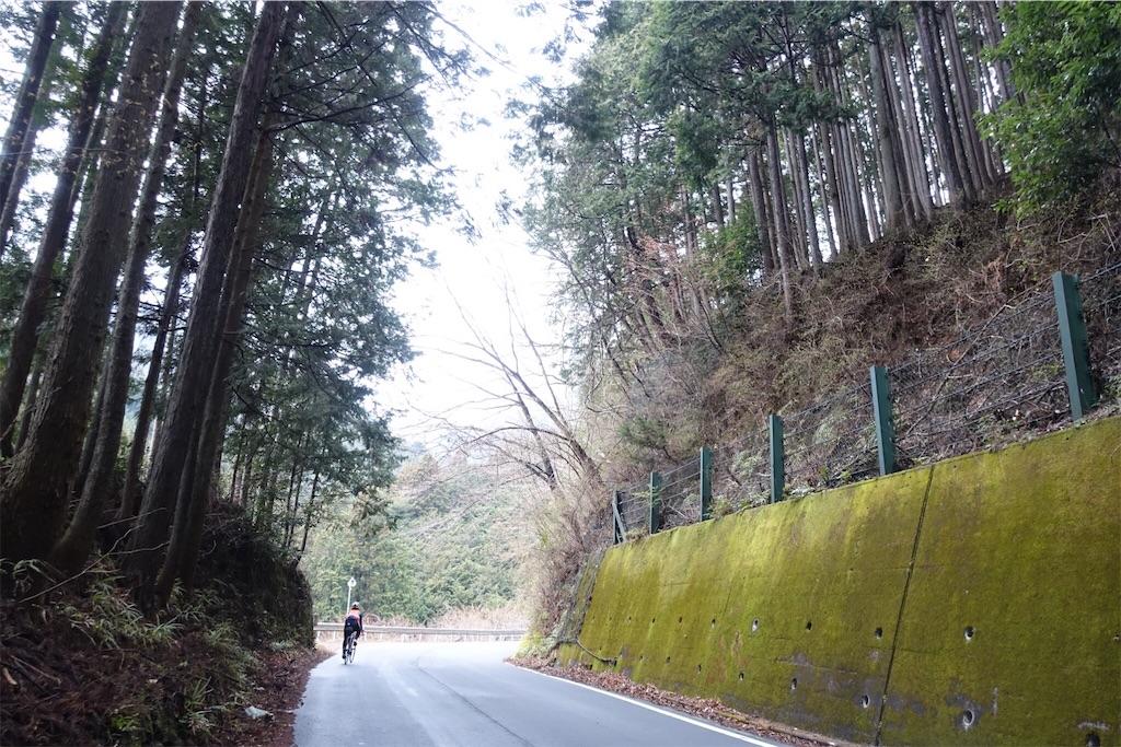 f:id:road_mushi:20190402181641j:image