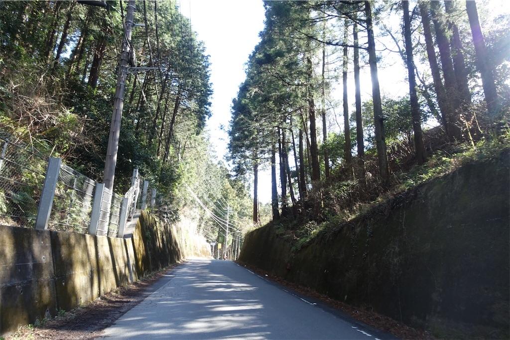 f:id:road_mushi:20190405215648j:image