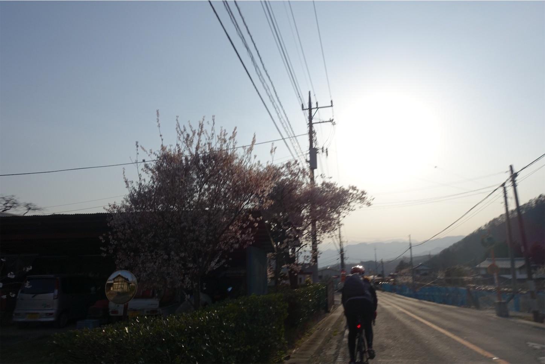 f:id:road_mushi:20190413053403j:image